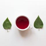 红色果子茶和绿色叶子 库存图片
