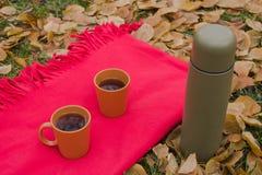 红色格子花呢披肩和热的茶露天 免版税库存照片
