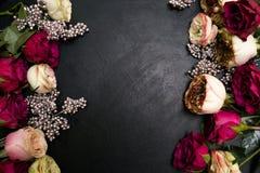 红色桃红色玫瑰变成银色装饰黑暗的花卉背景 免版税库存图片