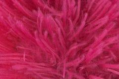 红色桃红色羊毛织品背景纹理 库存照片