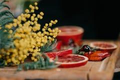 红色桔子、含羞草和两份纪念品鸭子普通话 免版税库存照片