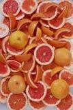 红色桔子 图库摄影