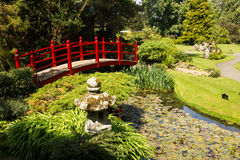 红色桥梁。爱尔兰全国螺柱的日本庭院。基尔代尔。爱尔兰 免版税库存图片