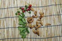 红色棕榈象鼻虫幼虫 免版税库存图片