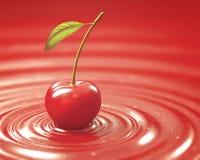 红色樱桃果酱 库存图片