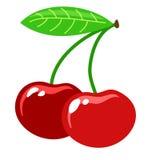 红色樱桃 免版税图库摄影