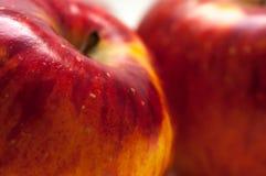 红色橙色五颜六色的苹果关闭宏观射击 库存图片