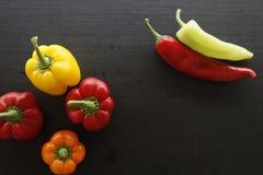 红色橙黄绿色甜椒 免版税库存图片