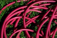 红色橡胶软管 免版税库存图片