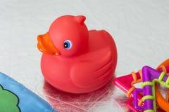 红色橡胶鸭子 免版税库存照片