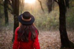 红色毛线衣的女孩,发现一个不可思议的森林 库存图片