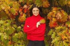 红色毛线衣的美丽的妇女在公园 免版税库存图片