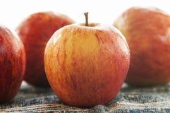 红色水多的苹果 免版税库存照片
