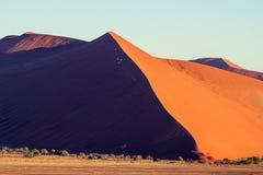 红色沙丘全景在Sesriem附近的Sossusvlei在著名纳米比亚沙漠在纳米比亚,非洲 图库摄影