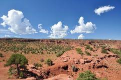 红色沙子沙漠在圆顶礁国家公园 库存照片