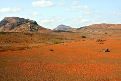 红色沙漠在佛得角 库存图片