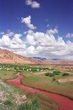 红色河谷 库存照片