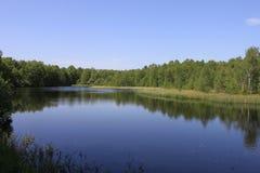 红色沼泽湖 图库摄影