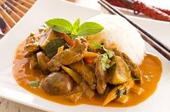 红色泰国咖喱用牛肉和菜 免版税库存照片