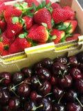 红色浆果 免版税库存图片