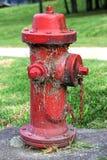 红色消防栓 免版税图库摄影