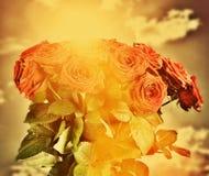 红色湿玫瑰开花在葡萄酒天空的花束 免版税库存图片