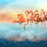 红色火鸟在沙漠 库存图片