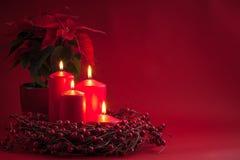红色灼烧的出现圣诞节蜡烛用莓果缠绕和在红色背景的一品红 免版税库存照片