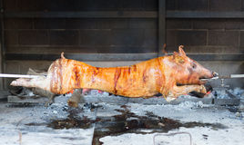 红色烤水多猪转动 库存照片
