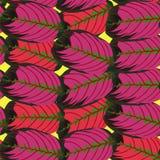 红色热带叶子样式 图库摄影