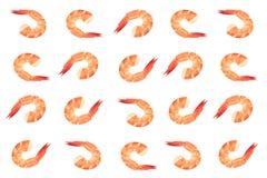 红色烹调了在白色背景隔绝的大虾或老虎虾 库存照片