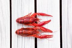 红色煮沸了在白色木背景的小龙虾 土气样式 杂志的盖子 海鲜菜单 免版税图库摄影