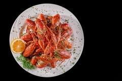 红色煮沸了小龙虾对在黑背景的啤酒,食物概念 复制空间 库存图片
