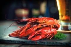 红色煮沸了小龙虾用柠檬和草本在石板岩 免版税库存图片