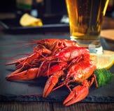 红色煮沸了小龙虾用柠檬和草本在石板岩 免版税库存照片