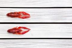 红色煮沸了crawfishin在白色木背景的黑长方形板材 土气样式 海鲜 蒸的小龙虾 库存照片