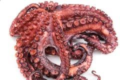 红色煮沸的章鱼特写镜头。 图库摄影
