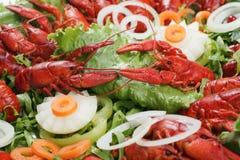 红色煮熟的湖的龙虾 免版税库存图片