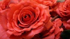 红色爱的玫瑰标志 免版税库存照片