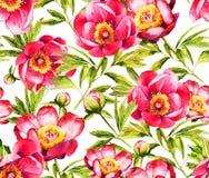 红色牡丹花水彩seamlaess样式 免版税库存照片