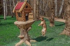 红色狗对scuirrel `嘿伙计说!听,我不是狐狸, l上午鸟 不肯定?看,我能飞行 我可以是您客人?` 库存图片