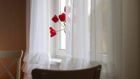 红色猫在窗口和坐上升 股票录像