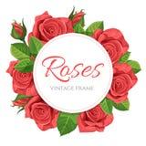 红色玫瑰传染媒介例证圆的框架 免版税库存图片