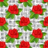 红色玫瑰传染媒介例证无缝的背景 库存照片