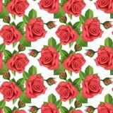 红色玫瑰传染媒介例证无缝的背景 免版税库存照片