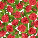 红色玫瑰传染媒介例证无缝的背景 库存图片