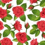 红色玫瑰传染媒介例证无缝的背景 免版税库存图片