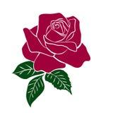 红色玫瑰剪影  免版税库存图片