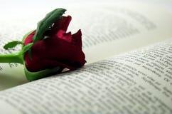 红色玫瑰和书2 免版税库存图片