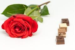红色玫瑰和各种各样的巧克力形状在白色背景爱言情华伦泰` s天概念 库存照片